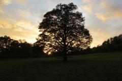 Sunrise Oct 2014