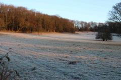 Frost Dec 2017