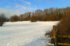 Meadow1 Dec 2014